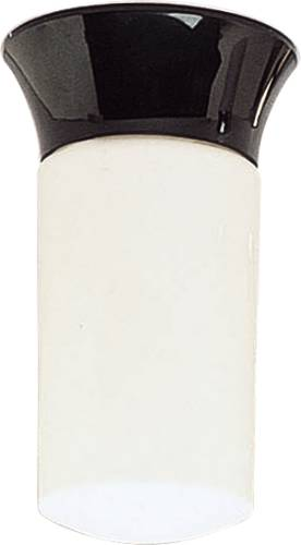 "WALL OR CEILING MOUNT JARTWIST LIGHT 4-3/4"" X 8-1/4"""